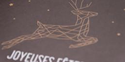 Zaniah, Carte, pantone métallisé, illustration, détail