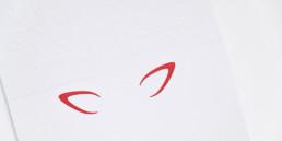 Carte de voeux, gaufrage, illustration, blanc et rouge