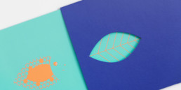 Carte et pochette avec découpe, illustrations, pantone orange fluo, détail