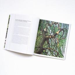 Guide, graphisme Zaniah, Parcs et Jardins, mise en page, plan large