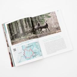 atelier zaniah, mise en page, guide édition, Livre domaine activité et loisirs Suisse romande