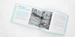 atelier zaniah, graphisme, guide édition