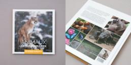 cover guide animaux, éditeur Creaguide, Création et mise ne page du contenu par bureau de graphisme
