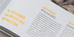 détail, guide, graphisme, mise en page, livre, typographie