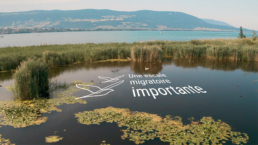 Video, yverdon région, lac de neuchâtel, integration texte