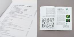Livre botanique, sommaire et article, typographie, grille de mise en page
