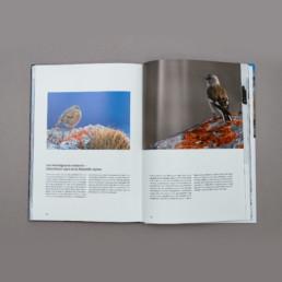 Graphisme, images et texte, livre photo