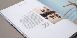 Détail article, choix typographique et grille de mis en page, atelier de graphisme à orbe