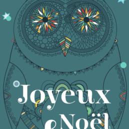 Illustration et typographie, fête de fin d'année e-panel Zaniah, détail